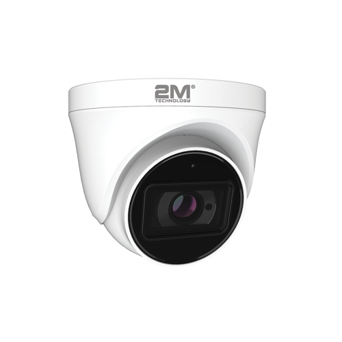 Analog Eyeball camera