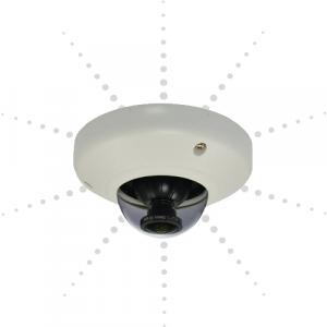 Fisheye IP Cameras